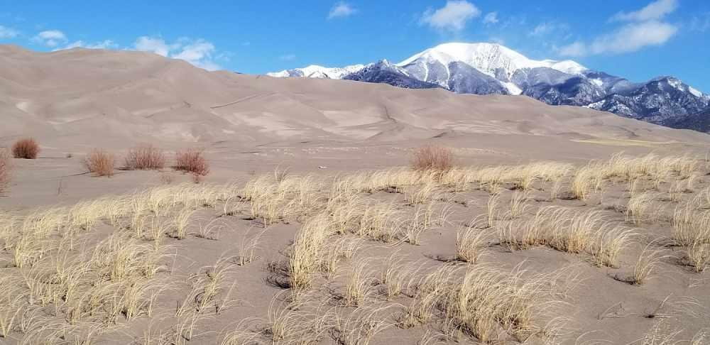 Great Sand Dunes National Park birding hiking tour guides