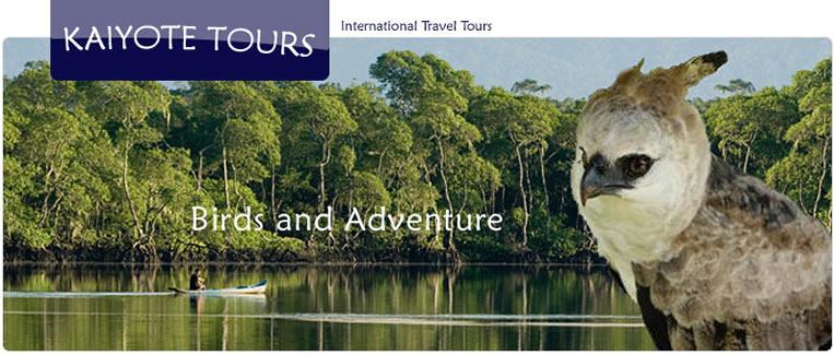 Amazon Birding Colombia