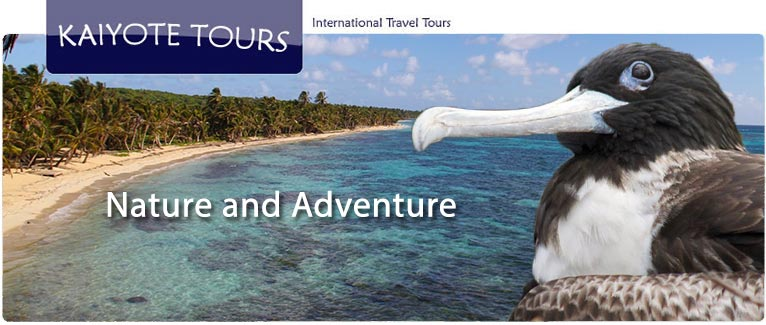 Birding Diving Snorkeling Corn Islands Guided Tour