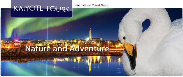 Birding Europe Tours Culture History Cuisine Vacations