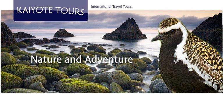 Westfjord Iceland Tour
