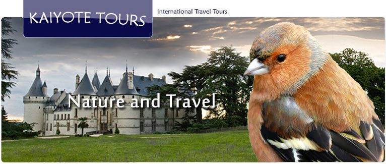International Trip Reservations with Kaiyote Tours